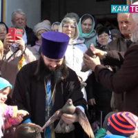 kamenskoe-televidenie-09_04_2019